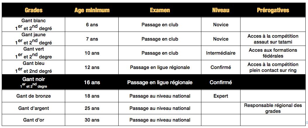 Grades. Tableau du parcours martial en K1 rules.